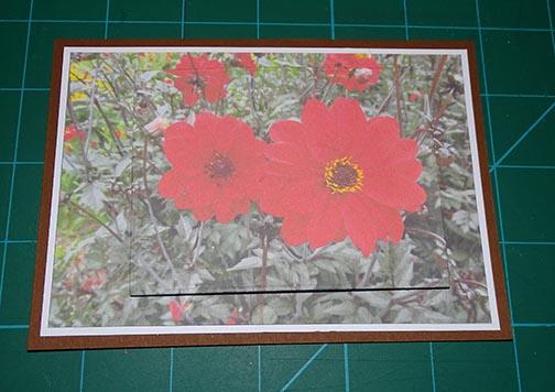 pyramage-printed-card-image-10