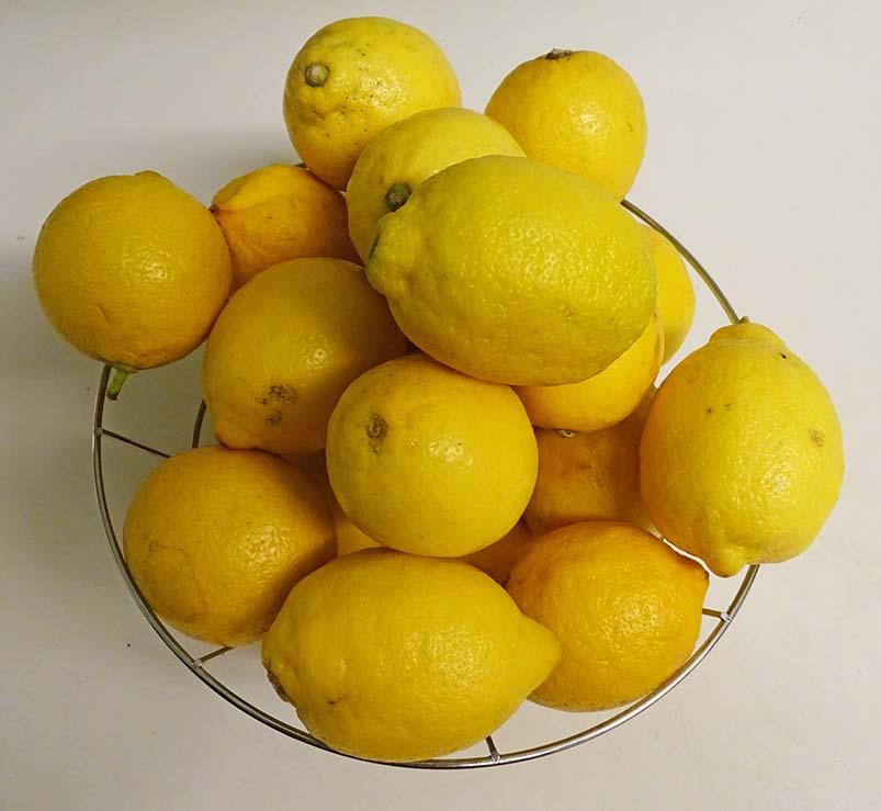 Frozen lemons image 1