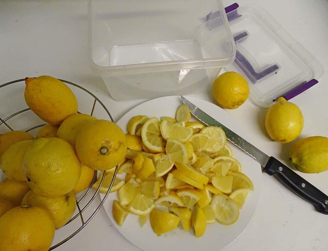 Frozen lemons image 2