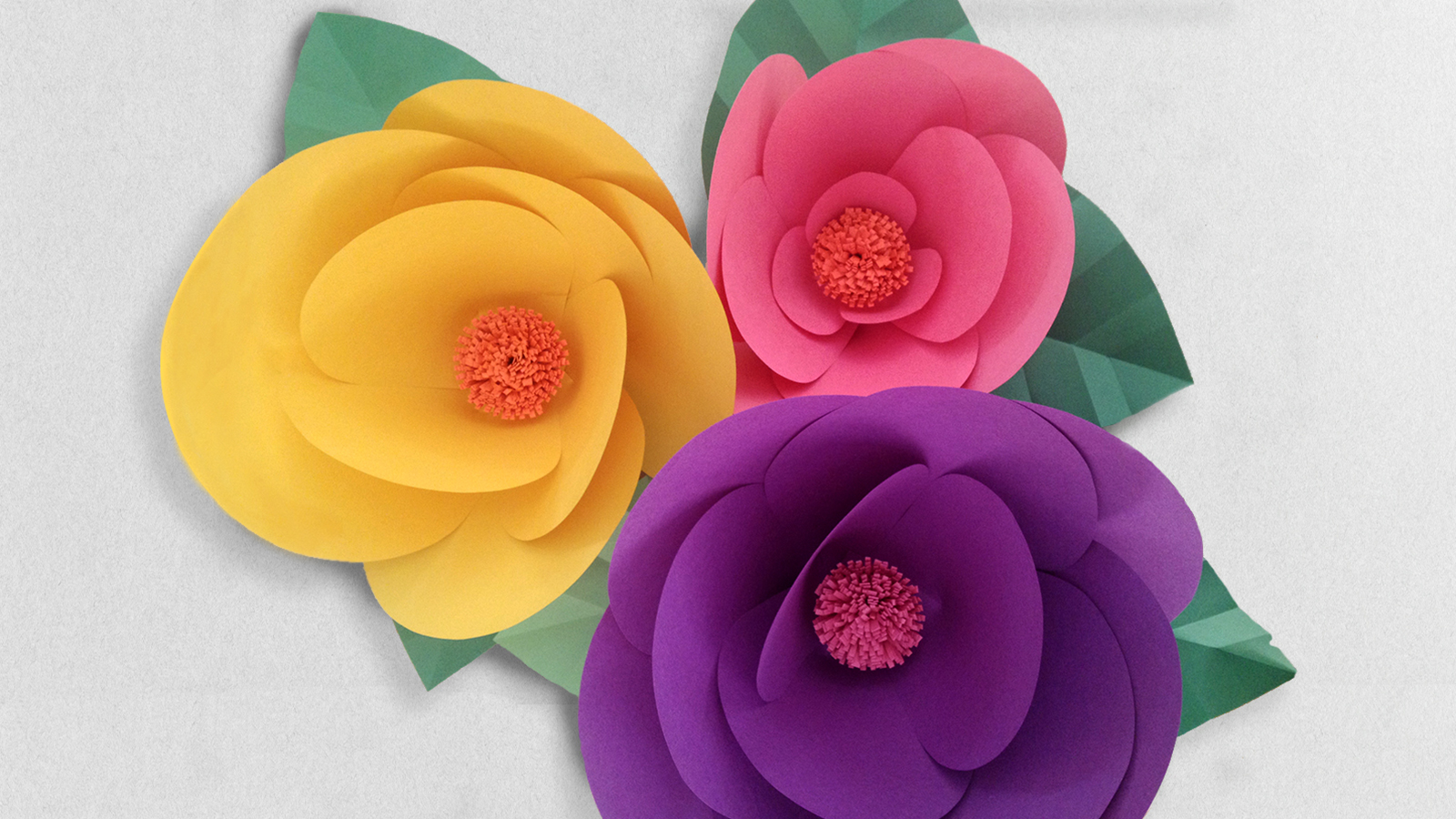 Class learn the art of paper flowers and make paper flowers with link httpscreativelivecourseshow make paper flowers robert mahar mightylinksfo