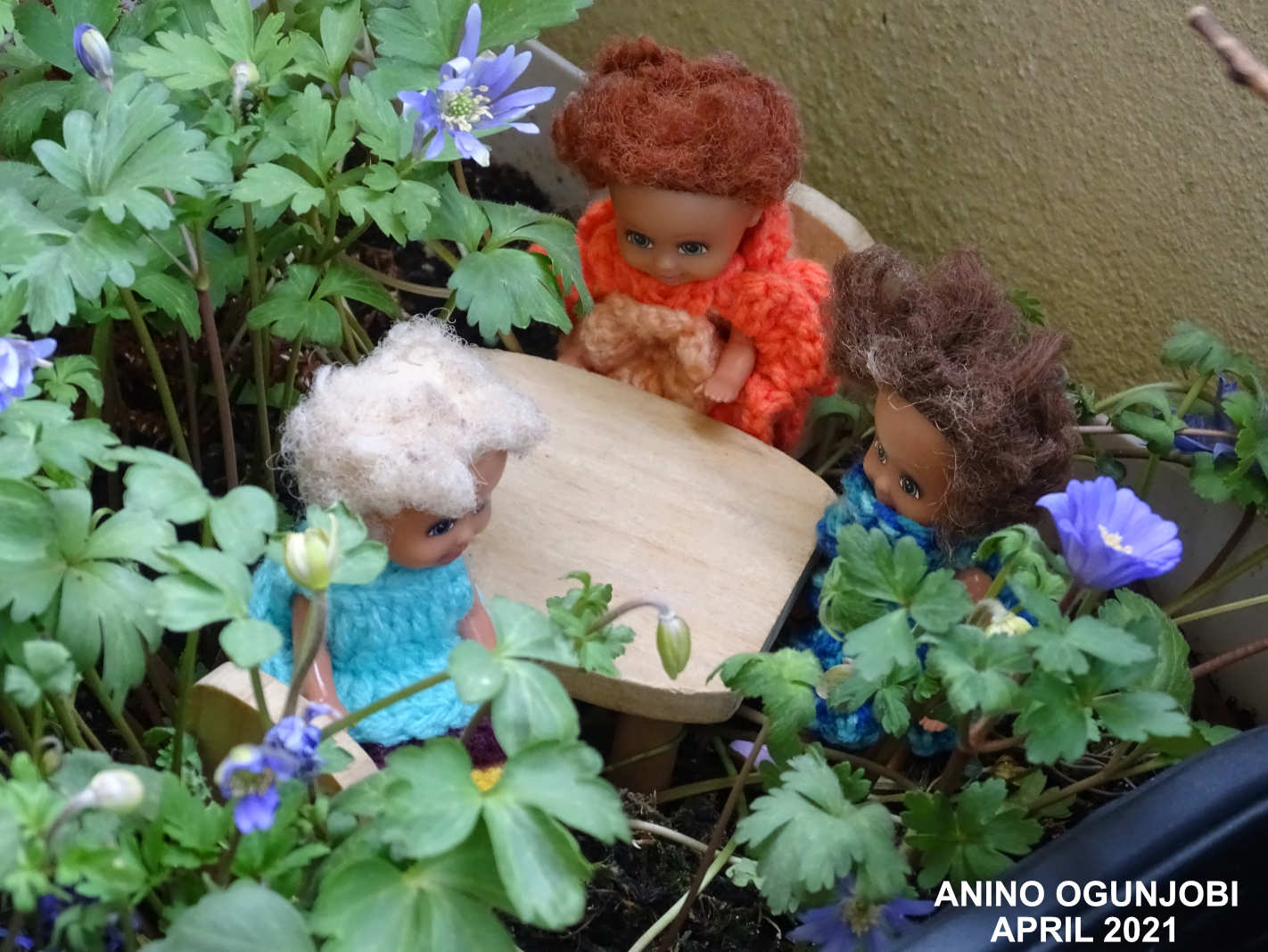 Relaxing-under-the-Anemone-Blanda-Mix-with-Doll-friends